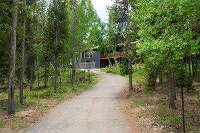 Conifer Single Family Home Under Contract: 29735 Kennedy Gulch Road