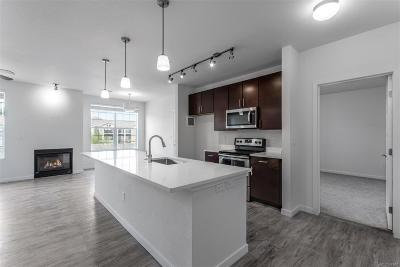 Parker Condo/Townhouse Under Contract: 17353 Wilde Avenue #101 D