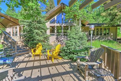 Evergreen Single Family Home Active: 531 Mountain Estate Drive