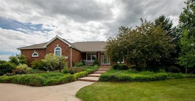 Windsor Single Family Home Active: 918 Clydesdale Lane