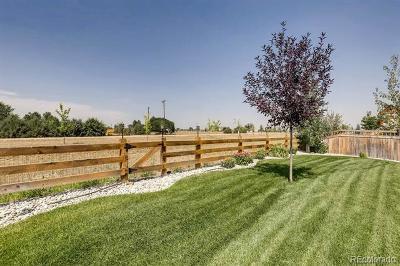 Frederick Single Family Home Active: 3320 Eagle Butte Avenue