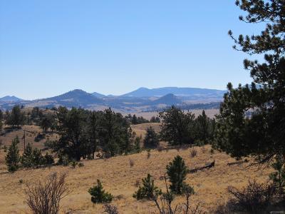 Park County Residential Lots & Land Active: 621 Hiawatha Drive
