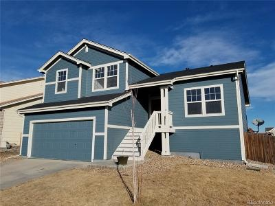 Brighton Single Family Home Active: 4331 Mt Harvard Street