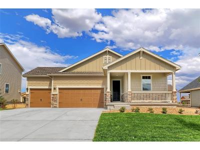 Elbert County Single Family Home Under Contract: 5780 Desert Inn Loop