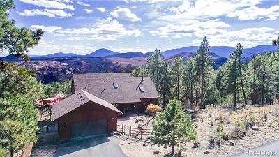 Bailey Single Family Home Sold: 330 Holmes Gulch Road