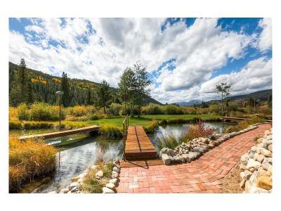 Summit County Condo/Townhouse Sold: 56 River Run Road #102