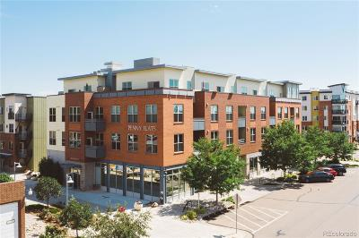 Fort Collins Condo/Townhouse Under Contract: 204 Maple Street #305