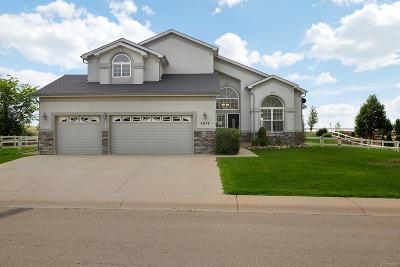 Firestone Single Family Home Under Contract: 6674 Saddleback Avenue