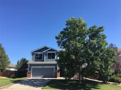 Castle Rock Single Family Home Active: 5519 East Burlington Drive