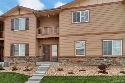 Longmont Single Family Home Active: 1524 Sepia Avenue