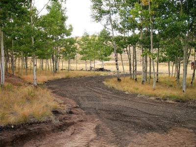 Hartsel Residential Lots & Land Active: 11335 Ranch Road