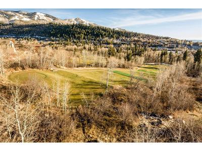 Steamboat Springs Residential Lots & Land Active: 557 Steamboat Boulevard