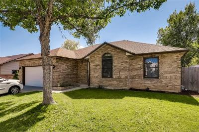 Longmont Single Family Home Active: 1837 Sunlight Drive