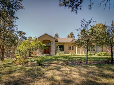 Colorado Springs Single Family Home Active: 4297 Wavy Oak Drive
