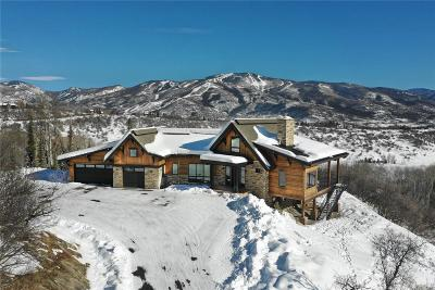 Steamboat Springs Single Family Home Active: 35700 Humble Road