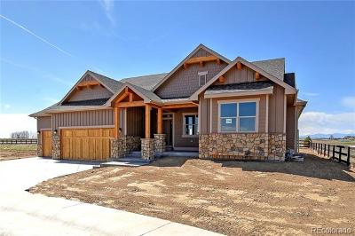 Windsor Single Family Home Active: 998 Hitch Horse Drive