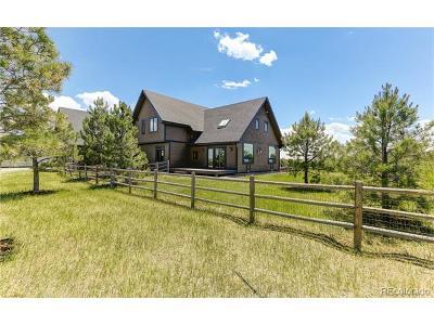Elbert County Single Family Home Active: 24745 Ben Kelly Road