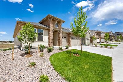 Castle Pines Single Family Home Under Contract: 6952 Hyland Hills Street