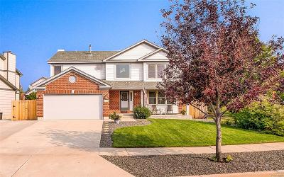 Colorado Springs Single Family Home Active: 3920 Cottage Drive