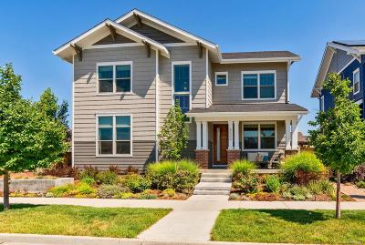 Denver Single Family Home Active: 8009 Stoll Place