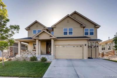 Erie Single Family Home Active: 1127 Zodo Street