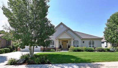 Fort Collins Single Family Home Active: 1003 Pinnacle Place