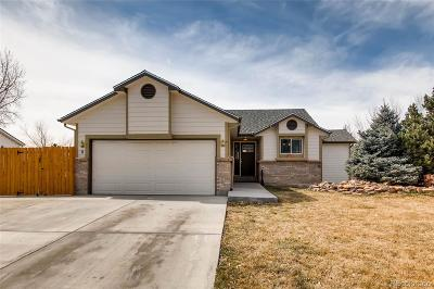 Douglas County Single Family Home Active: 11387 Donley Drive
