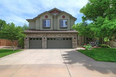 Littleton Single Family Home Active: 6106 West Long Drive
