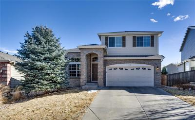 Parker Single Family Home Active: 16765 Trail Sky Circle