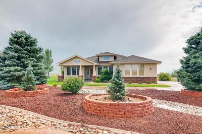Monument Single Family Home Active: 1425 Bowstring Road