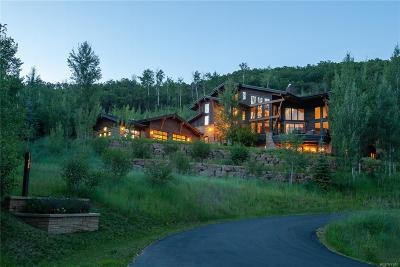Steamboat Springs Single Family Home Active: 31665 Aspen Ridge Road