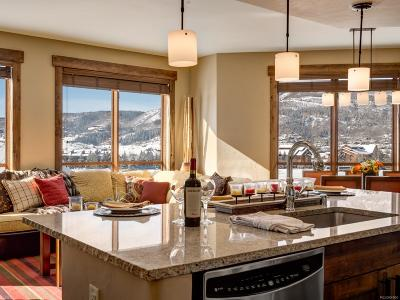 Steamboat Springs Condo/Townhouse Active: 1175 Bangtail Way #4104