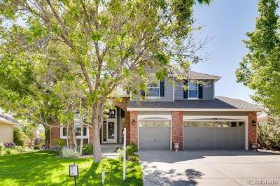 Castle Pines North Single Family Home Active: 330 Shoreham Circle