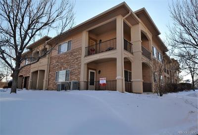 Longmont Condo/Townhouse Under Contract: 1703 Whitehall Drive #6D