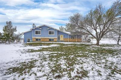 The Meadows Single Family Home Active: 10250 Raptor Loop