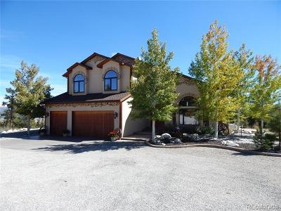 Buena Vista CO Single Family Home Active: $1,300,000