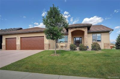Salida Single Family Home Active: 415 Cottonwood Circle