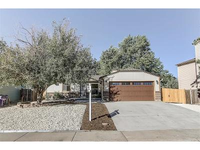 Denver Single Family Home Active: 4501 Del Rio Court