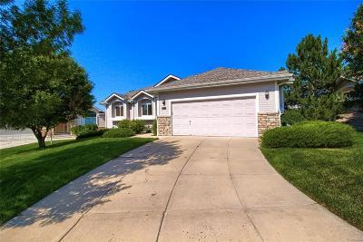 Castle Rock Single Family Home Active: 601 Stafford Circle