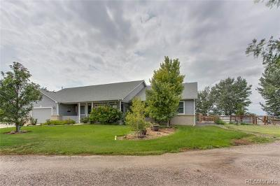 Keenesburg Single Family Home Active: 25049 Highway 52