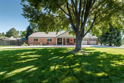 Denver Single Family Home Active: 3200 East Flora Place