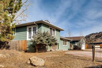 Castle Rock Single Family Home Active: 1193 Glen Street