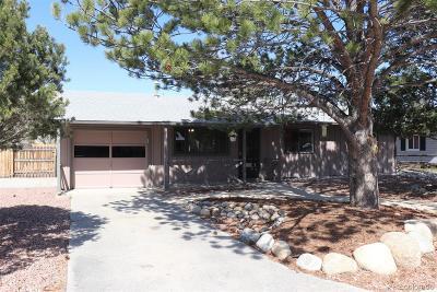 Buena Vista Single Family Home Under Contract: 108 Stoney Run