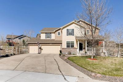 Crystal Valley Ranch Single Family Home Active: 3027 Mountain Sky Drive