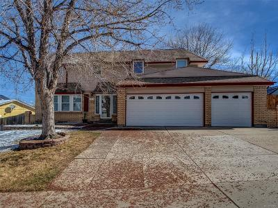 Single Family Home Active: 4948 South Alkire Street