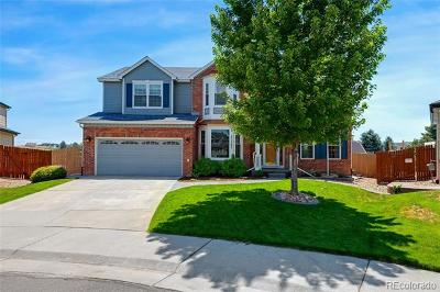 Parker Single Family Home Active: 21362 Snowcreek Court