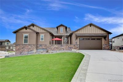 Evergreen, Arvada, Golden Single Family Home Active: 9548 Lupine Way