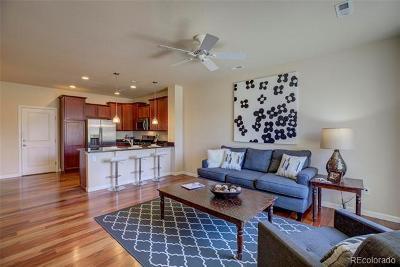 Arvada Single Family Home Active: 6293 Poppy Court #B