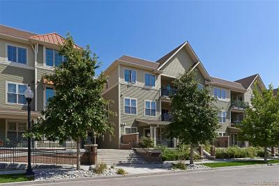 Littleton Condo/Townhouse Under Contract: 5592 South Nevada Street #306