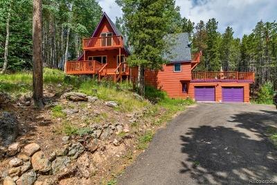 Evergreen Single Family Home Under Contract: 111 Sioux Trail